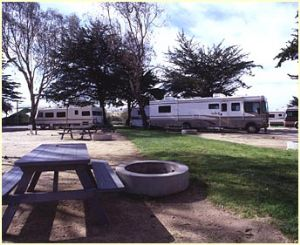Great RV areas to setup your adventure at Pismo Coast Village RV Park