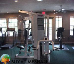 Silverleaf's Hill Country Gym View.